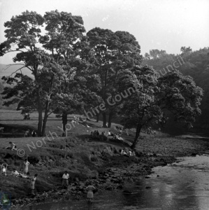 River Wharfe from Barden Bridge